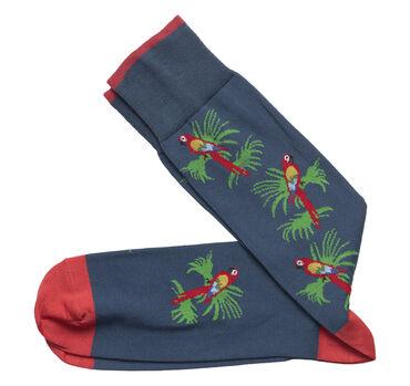 Parrot Socks