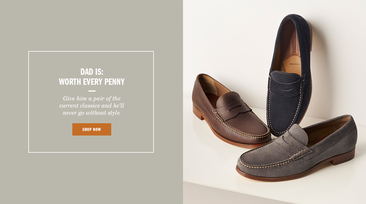 Dad is Worth Every Penny - Shop Men's Slip-Ons
